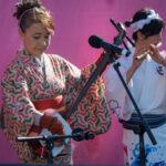 Sakura Ren, shamisen, sangen